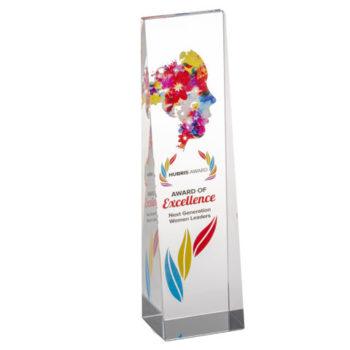 Hubris Award